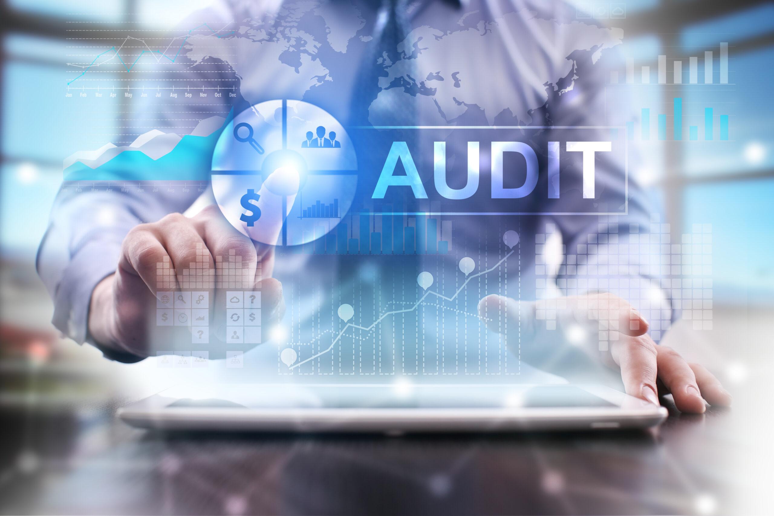Wat is een wettelijke audit?