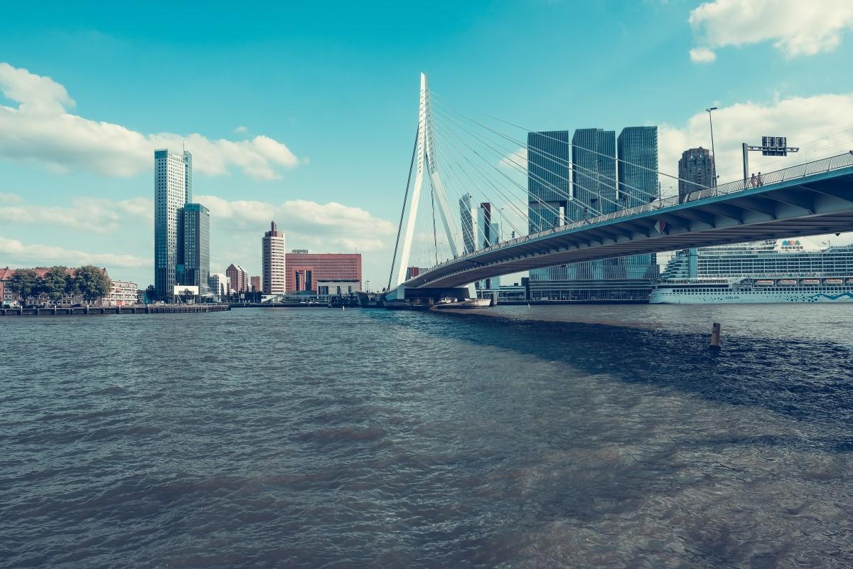 Rotterdam-business